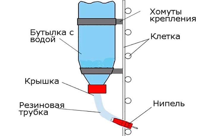 Изготовление поилок для уток: пошаговая инструкция