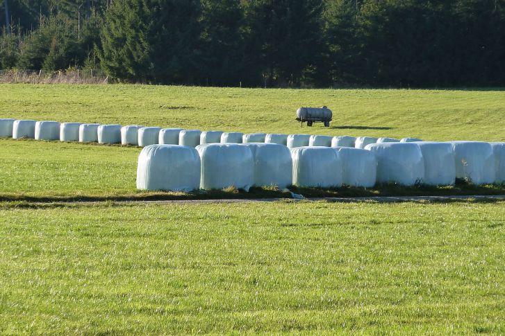 Хранение силоса на поле