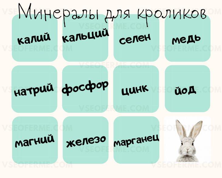 Необходимые минеральные вещества для кроликов
