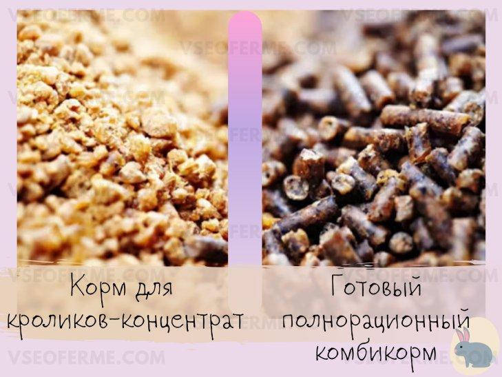 Виды гранулированного корма для кроликов