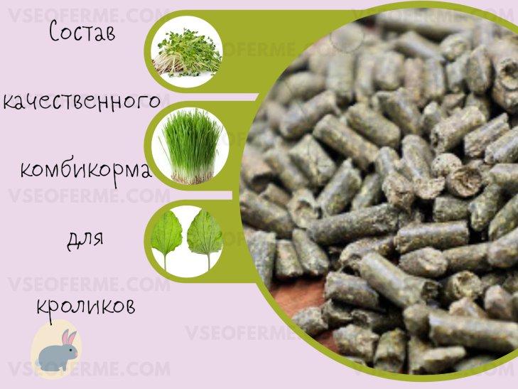 состав гранул, суточная норма, кормление кроликов гранулированным кормом